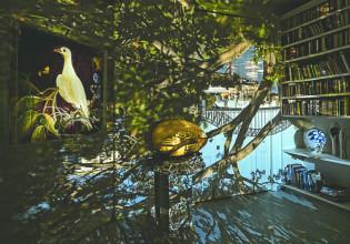 Inside Wendy and Brett Whiteley Library, Lavender Bay, 2016 (once the studio of Brett Whiteley)Photo: Robyn Stacey