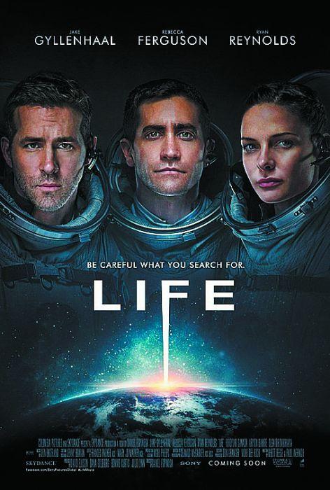 12.life