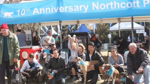 Lord Mayor Clover Moore and her dog enjoying the day with other pet owners Photo: Peter Murphy