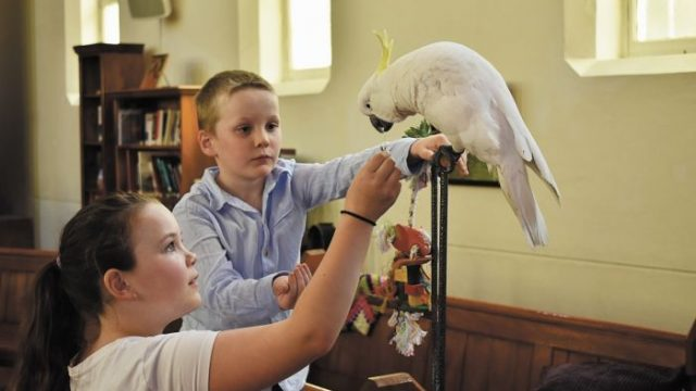 Phoebe and Jacob with Sephi the cockatoo at South Sydney Uniting Church. Photo: Edward Murray